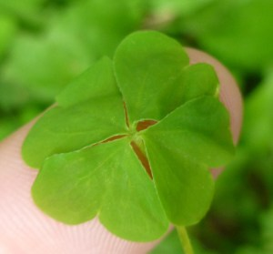 You are your own luck