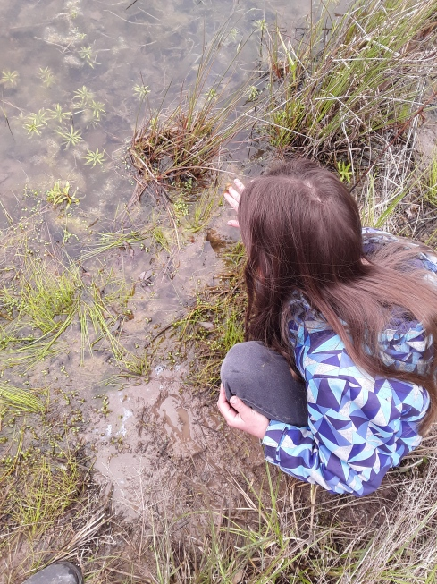 Lexi finding tadpole